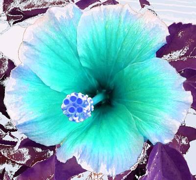 Flower Photograph - Dreamflower by Linda Bailey