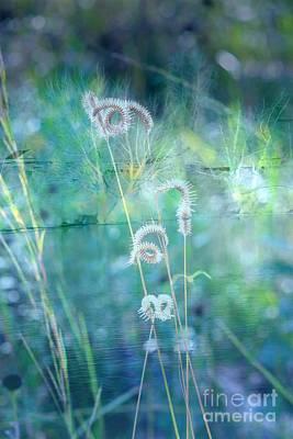 Dreaming In Blue Art Print by Carol Groenen