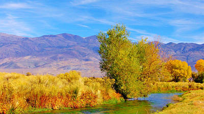 Owens River Photograph - Dreaming by Marilyn Diaz