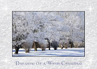 Photograph - Dreaming Of A White Christmas by Dee Cresswell