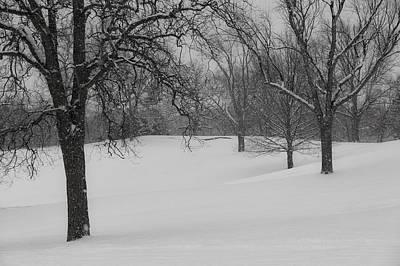 Winter Wonderland Mono Photograph - Dreaming Of A White Winter  Mono by Rachel Cohen