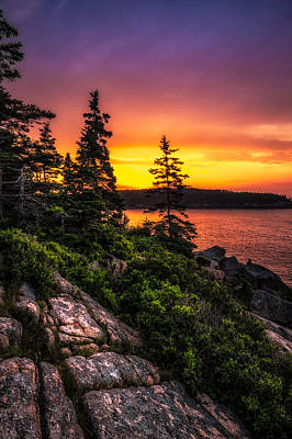 Photograph - Dreaming Of Acadia by Robert Clifford