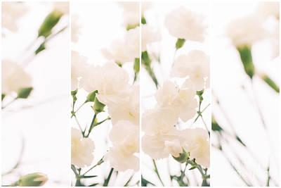 Dreaming Of Carnations - Natalie Kinnear Photography Art Print