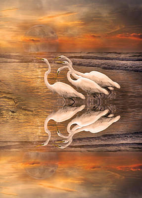 Reflecting Water Digital Art - Dreaming Of Egrets By The Sea Reflection by Betsy Knapp