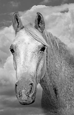Black And White Horses Digital Art - Dreaming Of Freedom by Renee Forth-Fukumoto