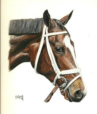 Race Horse Painting - Dreaming Of Julia by Pat DeLong