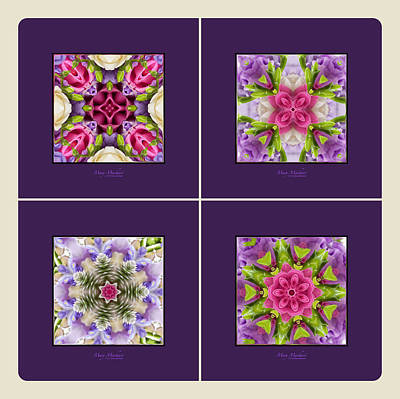 Kaleidoscope Photograph - Dreaming Of My Garden Group 1 by Mary Machare