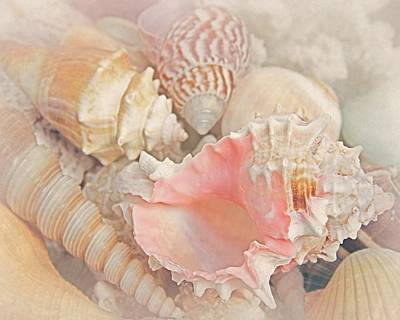 Exotic Creatures Photograph - Dreaming Of The Seashore by Elizabeth Budd
