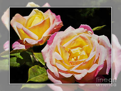 Photograph - Dreaming Rose 2 by Walter Herrit