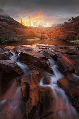 Autumn Foliage Photograph - Dreamland by Yan Zhang