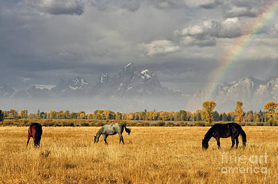 Dreams At The End Of The Rainbow Art Print by Deby Dixon