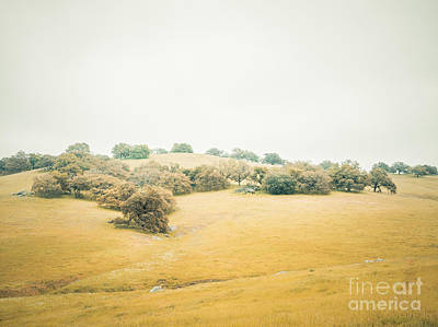 Photograph - Dreams Of Santa Ysabel I. by Alexander Kunz