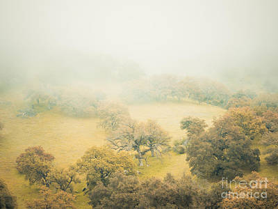 Photograph - Dreams Of Santa Ysabel V. by Alexander Kunz