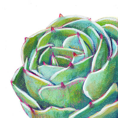 Succulent Painting - Dreams To Come by Athena  Mantle