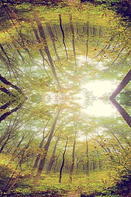 Photograph - Dreamscape by Gray  Artus