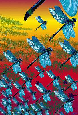 Photograph - Dreamscape - Rise Of The Dragonflies by Jon Lord