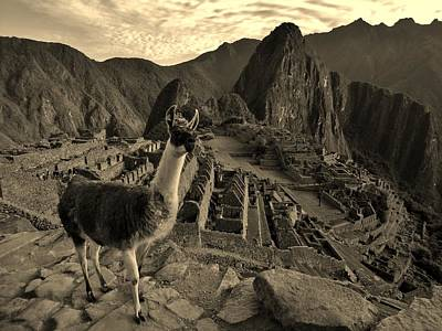 Llama Photograph - Dreamscapes In Peru by Sarah Pemberton