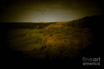 Photograph - Dreamscapes - Valley With Birds by Kathi Shotwell