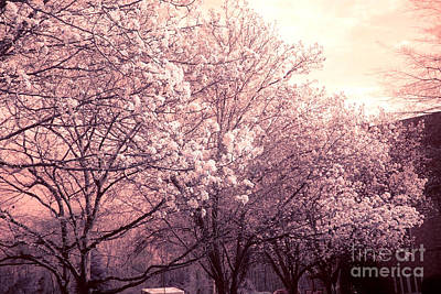 Dreamy Ethereal Pink And White South Carolina Trees Blossoms Art Print