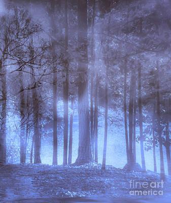 Dreamy Forest Art Print by Scott Hervieux