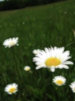 Photograph - Dreamy Gardens 10 by Rhonda Barrett