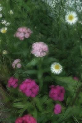 Photograph - Dreamy Gardens 2 by Rhonda Barrett