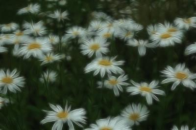 Photograph - Dreamy Gardens 6 by Rhonda Barrett