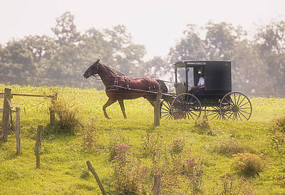Carriage Photograph - Dreamy Morning by Marcia Colelli
