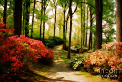 Walkway Digital Art - Dreamy Path by Lois Bryan