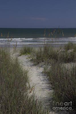 Dreamy Path To The Beach Art Print