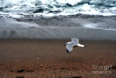 Photograph - Dreamy Serene Ocean Waves Coastal Scene by Kathy Fornal