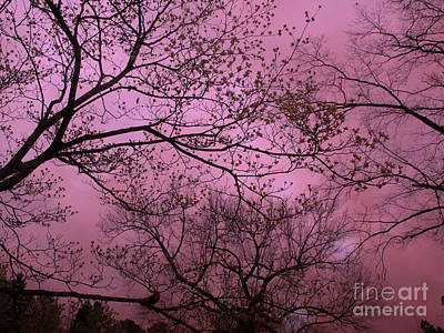 Dreamy Surreal Fantasy Dark Pink Nature Trees Dark Pink Sky  Art Print by Kathy Fornal