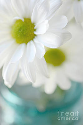 Cottage Floral Photograph - Dreamy White Daisies Aqua Mint Ball Jar Photography - Ethereal Dreamy Shabby Chic White Daisies  by Kathy Fornal