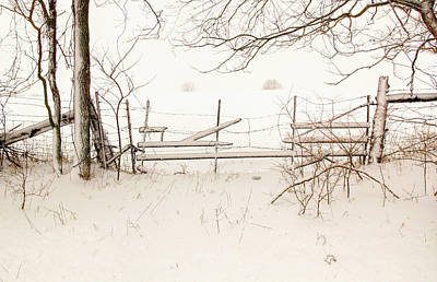 Photograph - Dreary Snow Day by Deb Buchanan
