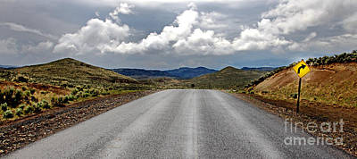 Buckaroo Photograph - Drewsey Oregon Road by Michele AnneLouise Cohen