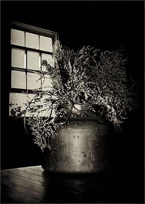 Brown Tones Photograph - Dried Arrangement - Window Light by Nikolyn McDonald