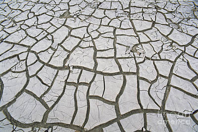 Photograph - Dried Mud In Texas by James Steinberg