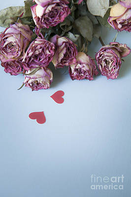 Dried Roses With Paper Hearts Print by Jan Bickerton
