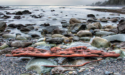 Juan De Fuca Provincial Park Photograph - Drift Log by James Wheeler