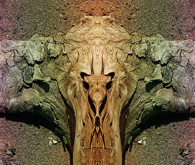 Photograph - Drift Totem by WB Johnston