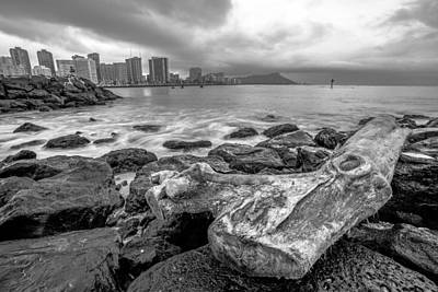 Art Print featuring the photograph Drift Wood by Robert  Aycock