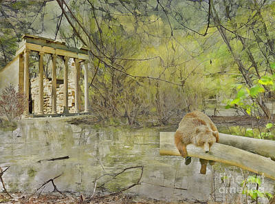Art Print featuring the photograph Drifter by Liane Wright