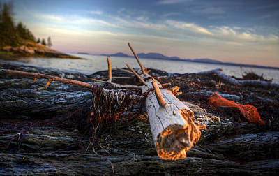 Maine Beach Digital Art - Drifting  by Kenny  Noddin