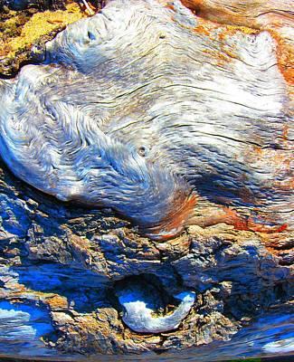 Photograph - Driftwood 11 by  Sharon Jones