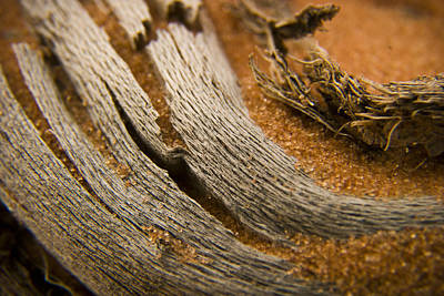Wood Grain Photograph - Driftwood 2 by Adam Romanowicz