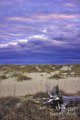 Photograph - Dawn Sand Dunes Sea Oats Tybee Island by Reid Callaway