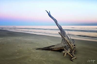 Driftwood At Dusk Art Print by Phill Doherty