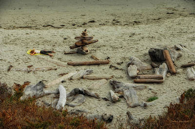 Photograph - Driftwood by Donna Blackhall