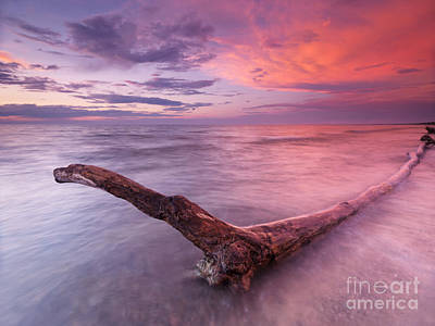 Pinery Photograph - Driftwood In Colorful Sunset Scenery At Lake Huron Ontario by Oleksiy Maksymenko