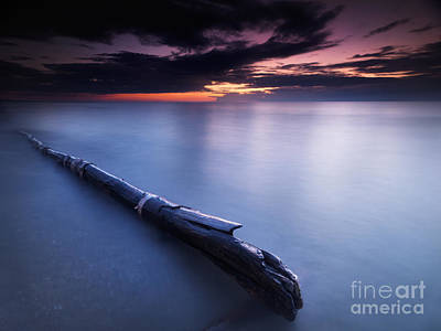 Pinery Photograph - Driftwood In Dramatic Sunset Scenery At Lake Huron Grand Bend by Oleksiy Maksymenko
